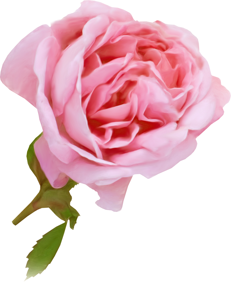 Букетом лфз клипарт букеты роз