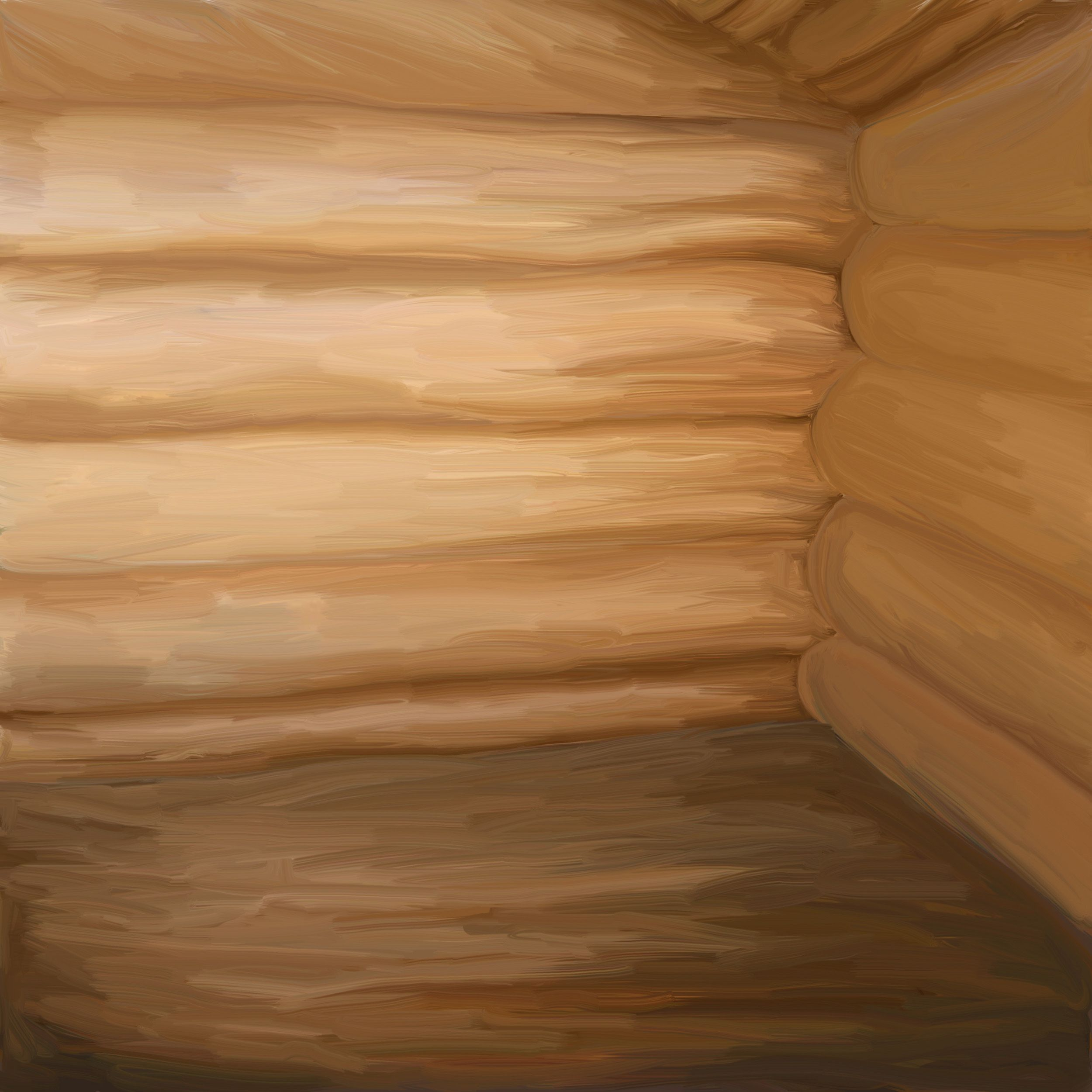 Рисунок на бревне внутри дома