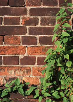 скачать фон кирпичная стена