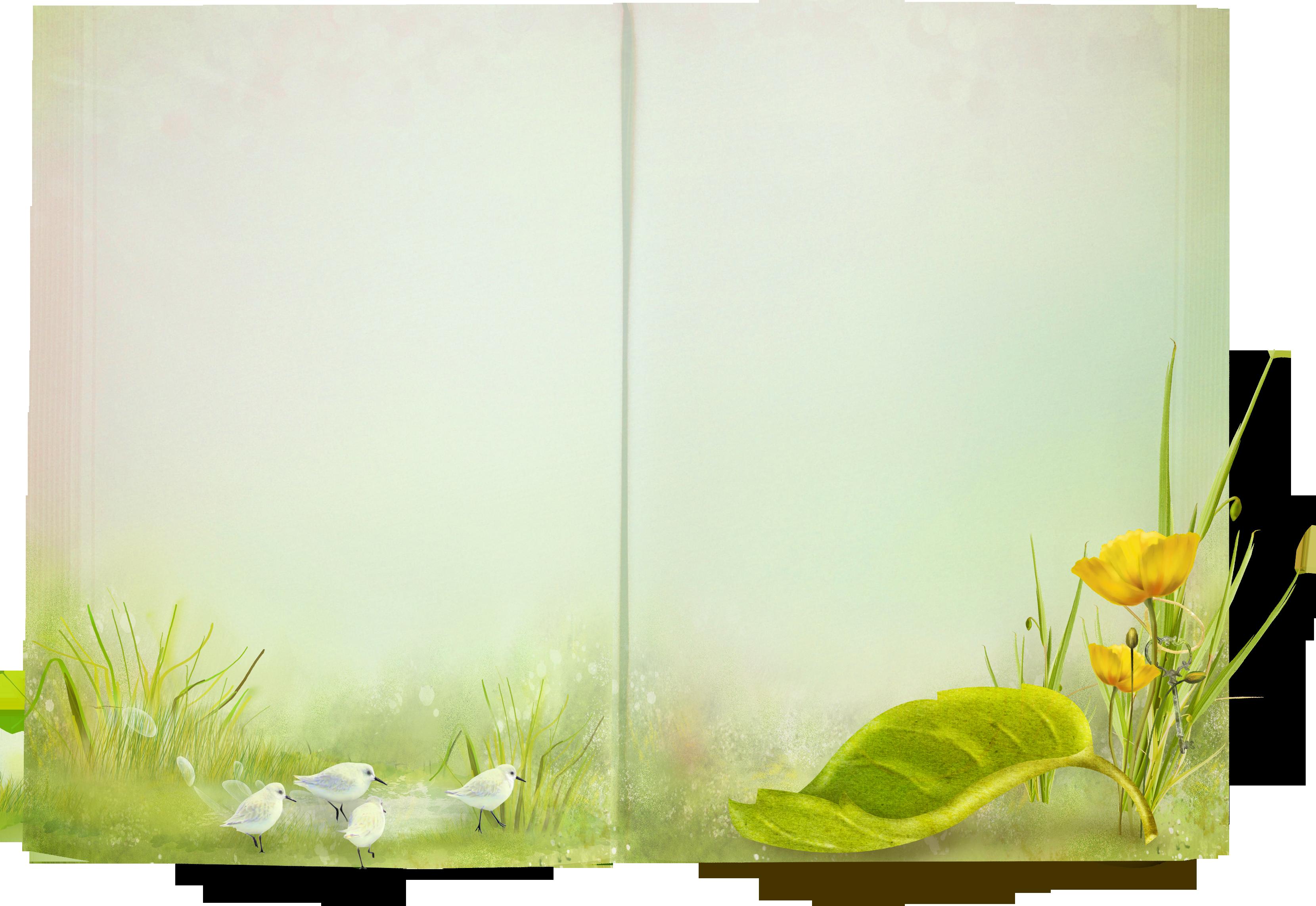 PNG картинки с прозрачным фоном cкачать бесплатно  PNGsru