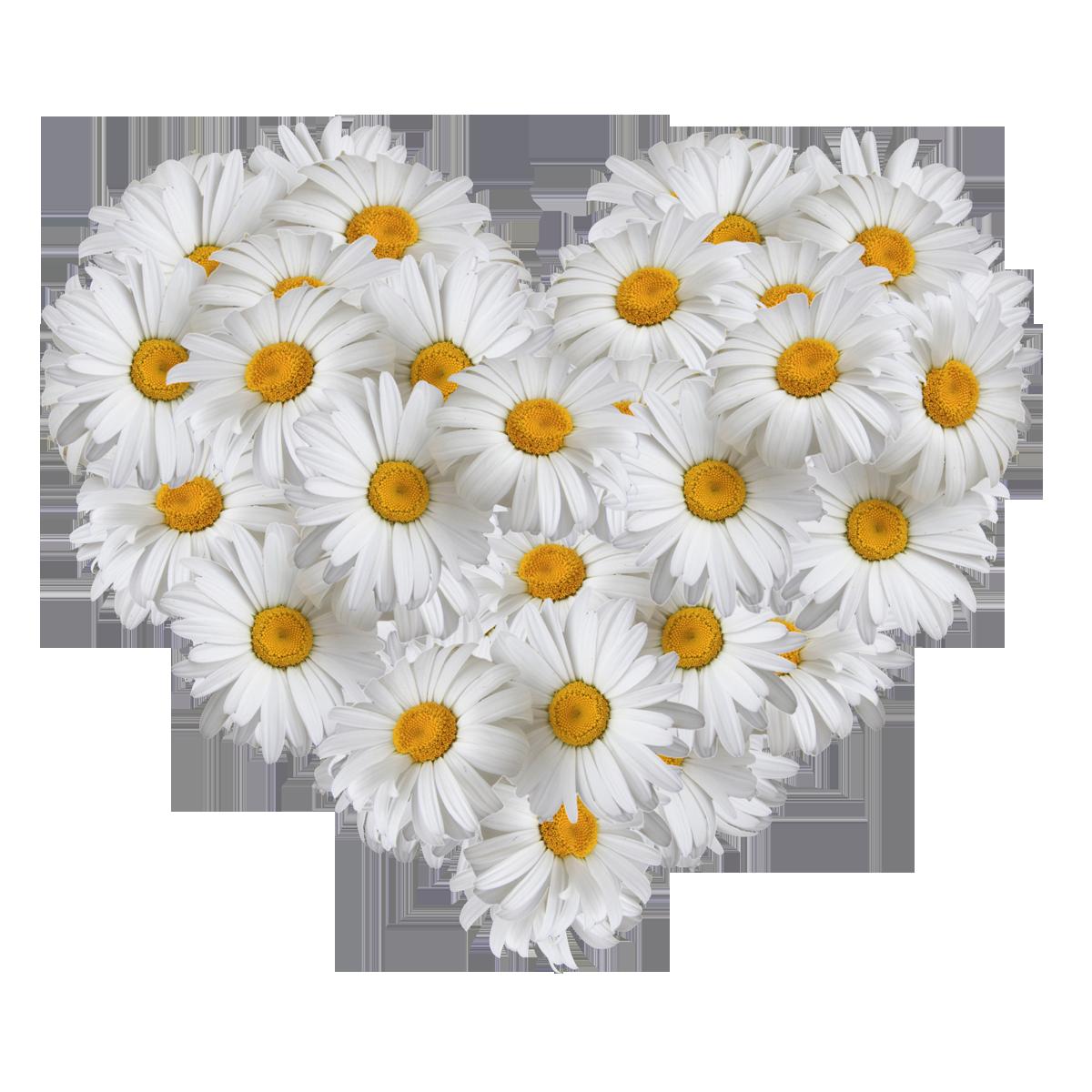 Картинки сердечки  lovefondru