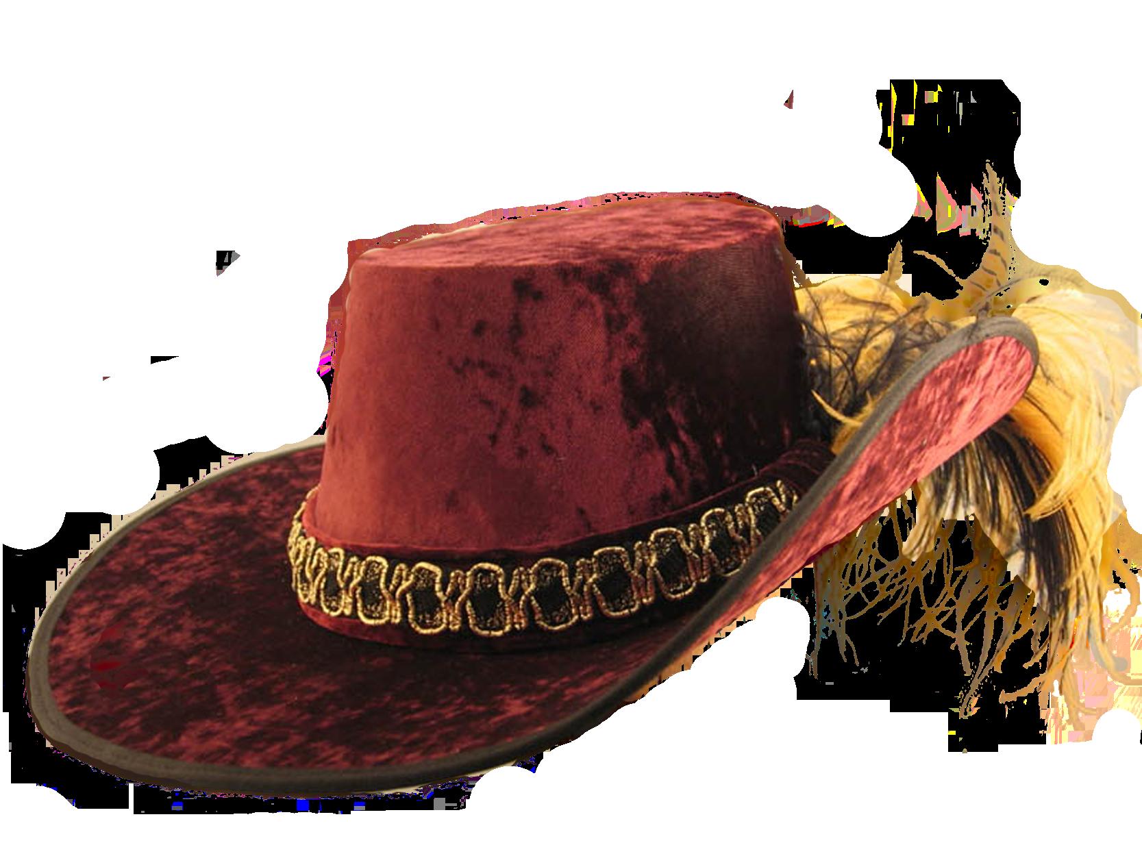 Картинки по запросу мужская шляпа с пером пнг