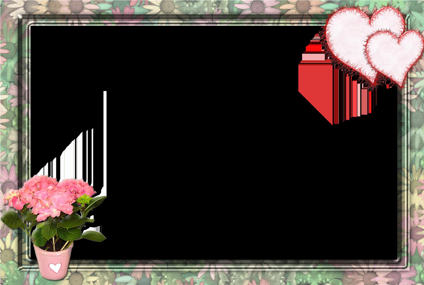 Варенье из лепестков роз  ликёр и сироп  пошаговый