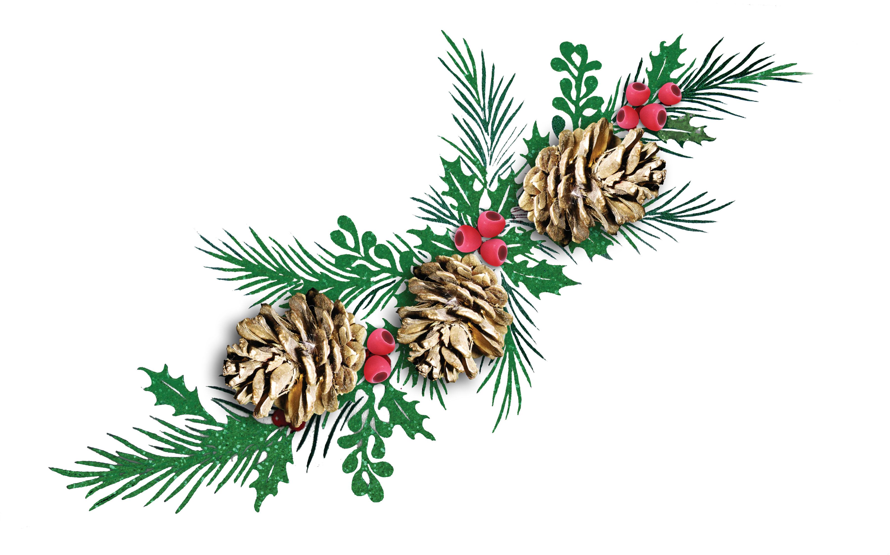 Картинки веточки ели новогодние без фона