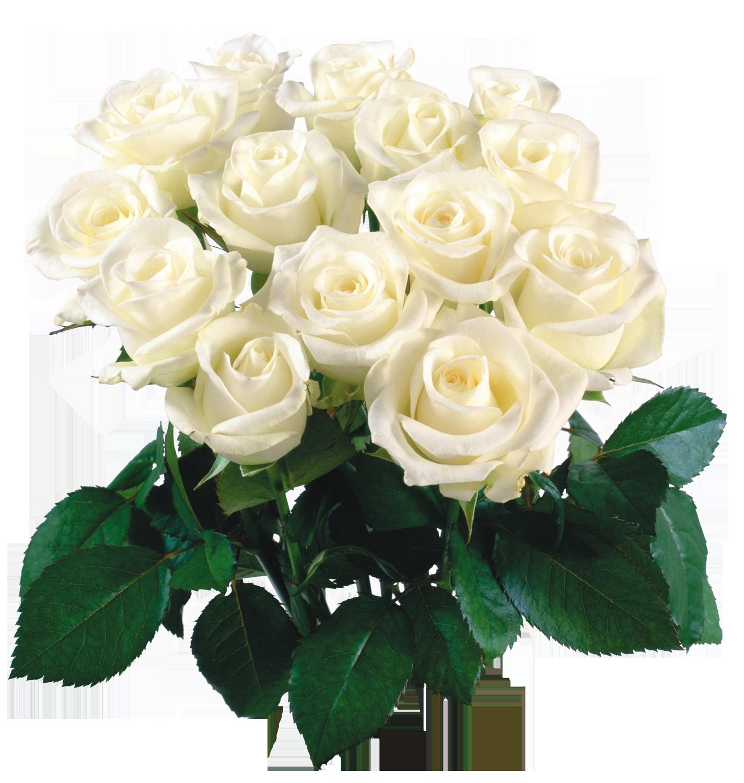 большой букет белых роз с пожеланиями ярославле