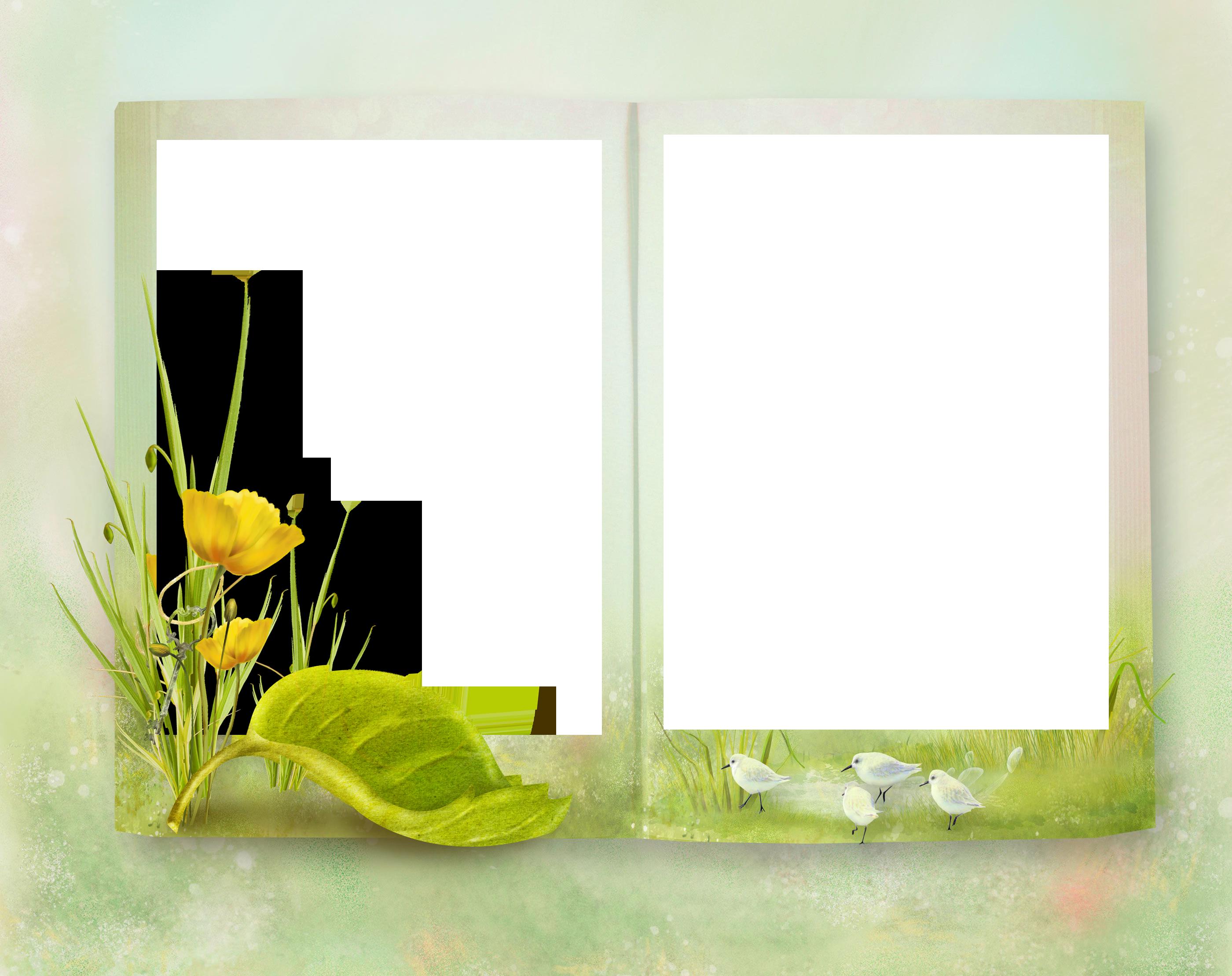 например, фоторамка книги на прозрачном фоне воздух, насыщенный ионами
